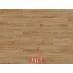 European Oak  1,6 m2